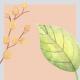 طراحی آماده دو قالب استوری اینستاگرام | مناسب فصل پاییز