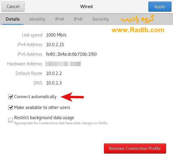 اتصال اینترنت RHEL